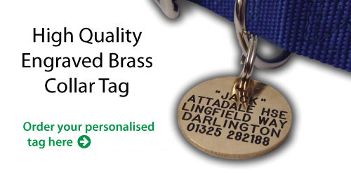 Engraved Collar Tag For Dogs and Cats | Solid Brass