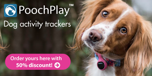 PoochPlay | Dog Activity Tracker